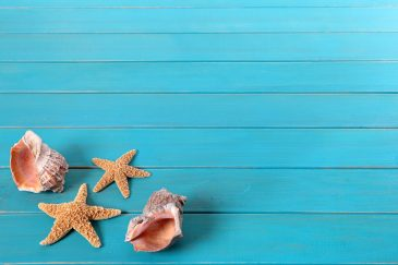 Starfish and seashells on old weathered blue painted wood decking.  Space for copy.